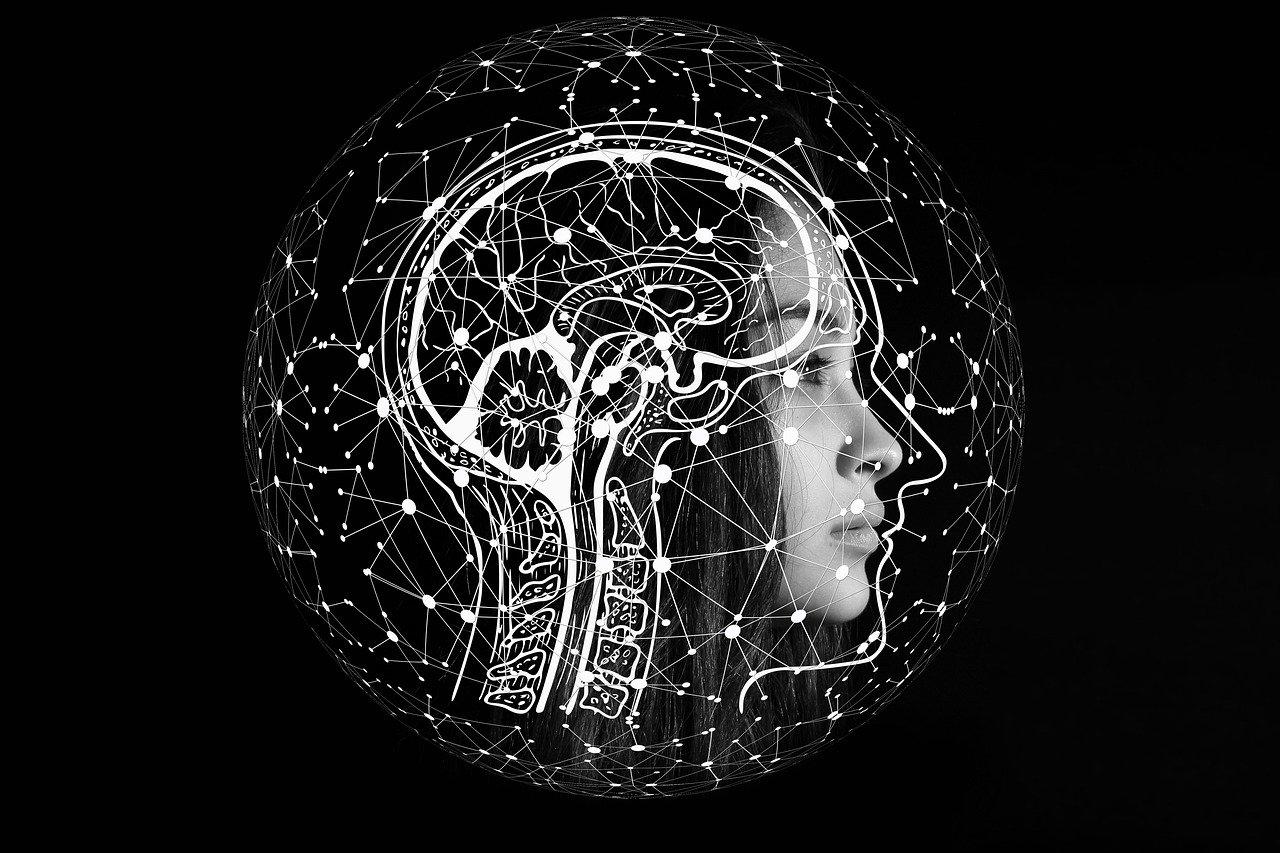 cerebro, opinión, decisiones, cambio