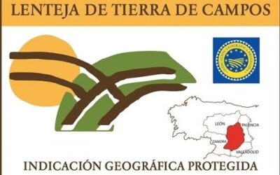 Finalista del VII Concurso de Microrrelatos Lenteja de Tierra de Campos